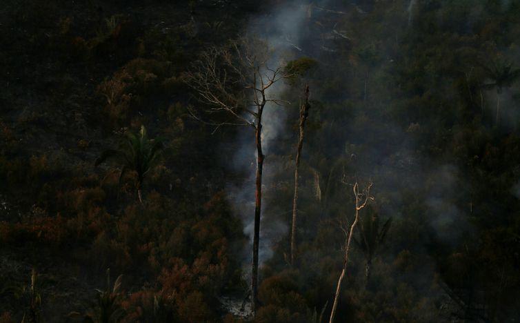 A queimadas na Amazônia tiveram alta em agosto e queda em setembro, segundo dados do Cesipam - Reuters/Ricardo Moraes/Direitos Reservados